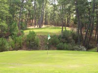 Par 3 at Lost Pines Golf Course