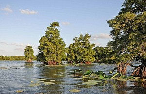 Best Texas State Parks For Fishing