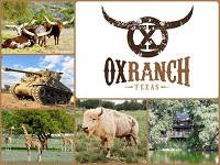 Ox Hunting Ranch