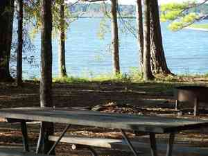 Genial Lake Livingston State Park Review And Rating
