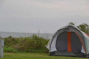Galveston Island State Park Review And Rating