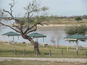 Lake corpus christi state park review and rating for Lake corpus christi fishing