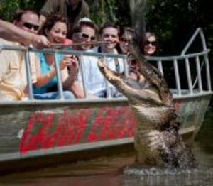 Cajun_encounters_swamp_tour_photo