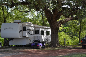 Alamo River Rv Ranch Amp Campground Review And Rating