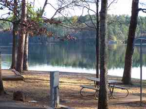 Tyler State Park Review And Rating