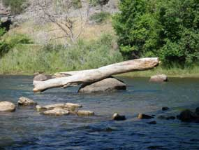 A teter totter in the Animas River