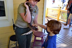 Learning about and petting snakes
