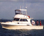 Choose one of these galveston fishing guides if you want for Galveston fishing charters cheap