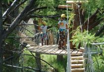 Cypress Canopy Tours