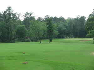 Houston_golf_trip_5-09_106