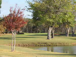 Detailed Review and Rating of Shady Oaks Golf Course in Baird