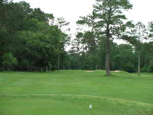 Houston_golf_trip_5-09_006