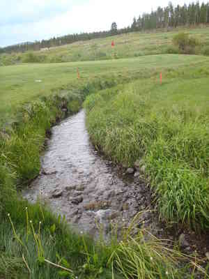 2010-7-20_pole_creek_039