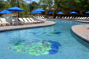One of the pools at the Woodlands Resort