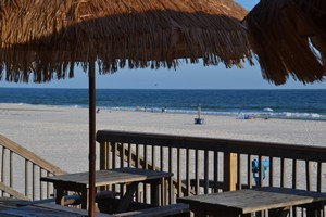Beach Bar in Gulf Shores