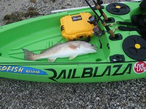 Rockport Kayak Fishing Guide