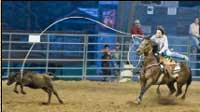 Rodeo in Bandera