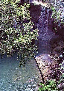 Hamilton Pool Offers a magnificent 50 foot Water Fall!!!