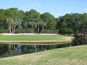 Hombre Golf Course - challenging hole over water to well protected green