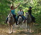 Riding horses at BlissWood