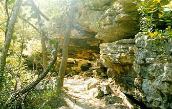 Several cliffs offer wonderful rock climbing adventures.