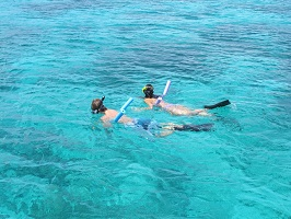 Snorkeling with Sail Safaris