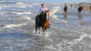 horseback riding on the beach at  South Padre Island Adventure Park