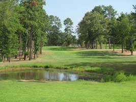 The Challenge At Gladewater golf hole