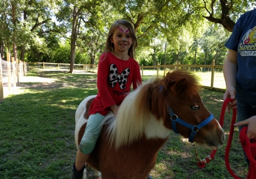 Fun Things For Kids To See and Do in Texas