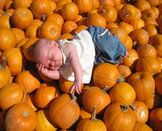 Asleep in a Texas Pumpkin Patch