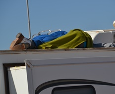 Asleep on the top of the camper