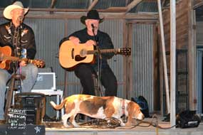 Dog on stage with Chris Wall and Thomas Michael Riley