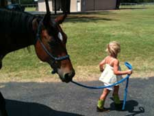 Texas Horseback Riding - Trail Rides, Lessons, Horse Rentals
