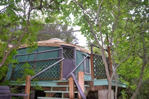 The treehouse yurt at Rainbow Hearth