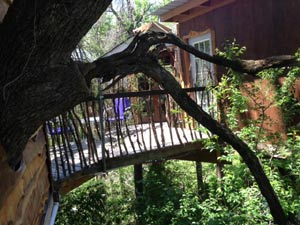 Savannah's Meadow Treehouse