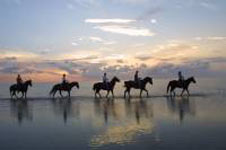 Top Ten Fun Things To Do On South Padre Island