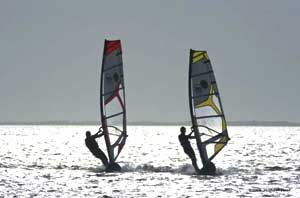 Windsurfing in the Bay