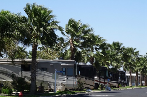 Best Rv Parks For Winter Texans In The Rio Grande Valley